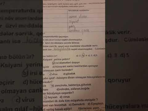 Həyat bilgisi: Doğru və Yanlış davranışlar