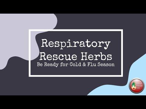 Respiratory Rescue Herbs