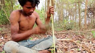 Primitive Technology   Making a bow and Arrow   How to make a bow by hand