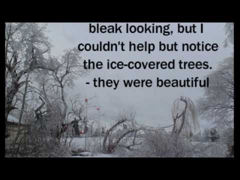 Beauty in an Ice Storm - Miramichi