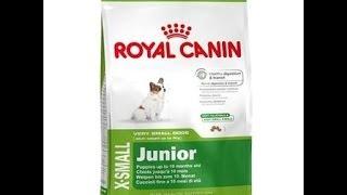Сухой корм для собак Royal Canin X small Junior