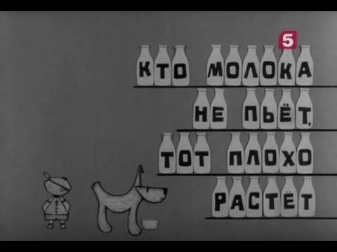 """""""Кто работает для вас. Очерк первый. Кто молока не пьет, тот плохо растет"""". ЛенТВ, 1967 г."""