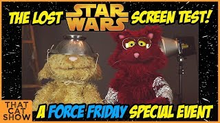 Star Wars Auditions - Funny Cats Lost Screen Test- That Cat Show