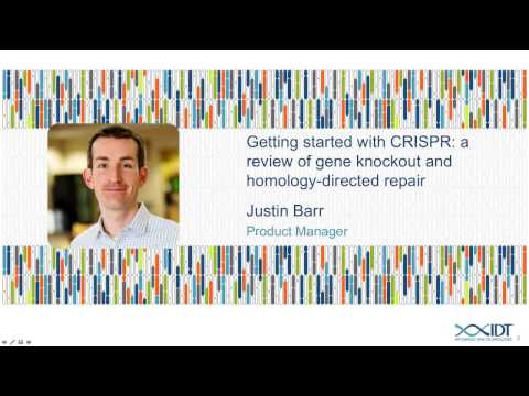 Getting Started With CRISPR: A Review Of Gene Knockout And Homology-directed Repair