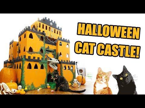 EPIC Halloween Cat Castle!