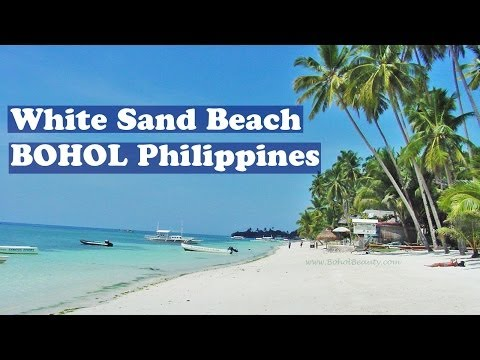 Panglao Island White Sand Alona Beach Beaches Bohol Philippines Coconut Trees Video by BoholBeauty