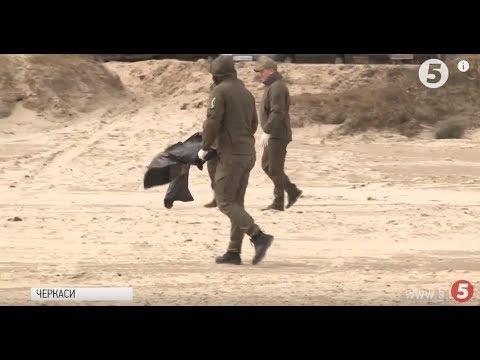 """""""Чисті водойми - екологічно здорова країна"""": активісти очистили узбережжя Дніпра у Черкасах"""
