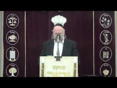 הרב ברוך רוזנבלום שיעור ברמה גבוהה על פרשת ויקרא 3 - פרשת ויקרא הרב ברוך רוזנבלום