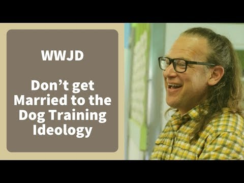 Don't get Married to the Dog Training Ideology