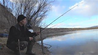 рыбалка на закидушку донку с берега Рыбалка 2021