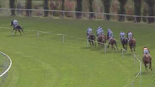 Vidéo de la course PMU PRIX DE HAYDOCK
