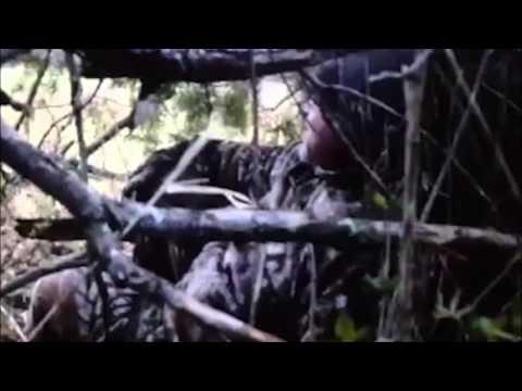 Turkey Hunt At Tuttle Creek