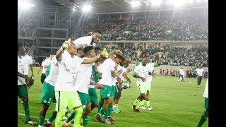 SEE HOW NIGERIAN FANS CELEBRATED SUPER EAGLES WORLD CUP QUALIFICATION