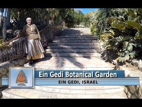 Ein-Gedi Botanical Garden-Explore Israel With The RiverWinds