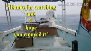 Fishing Yellowtail with bad weather conditions 2016.