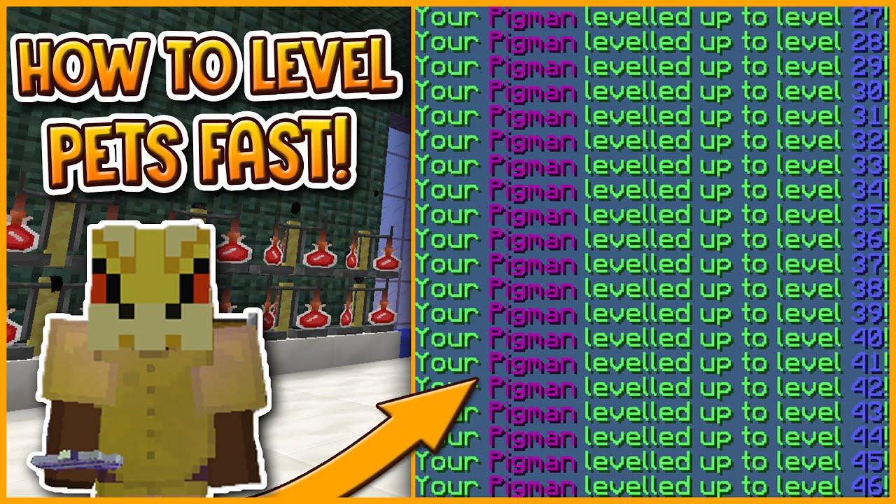 Hypixel Skyblock How To Level Up Pets Fast Youtube