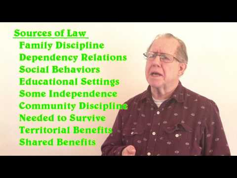 Unizor - US Law - Source of Law