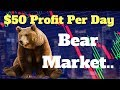 Simple Way To Profit $50 Per Day Trading During A Cryptocurrency Bear Market   Tutorial