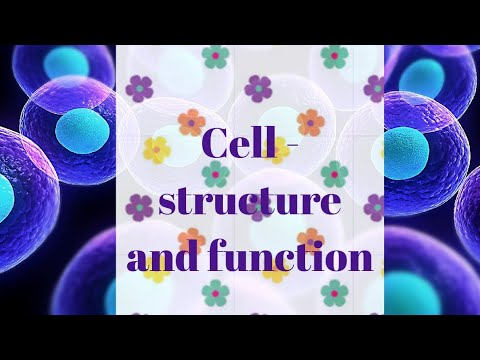 Cell - structure and function class - 8(ncert) - YouTube