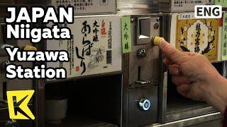 【K】Japan Travel-Niigata[일본 여행-…