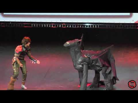 S.O.S 2017 Парное косплей-дефиле - How To Train Your Dragon - Hiccup - Toothless