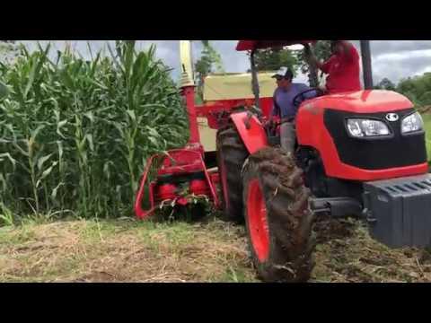 Cosechadora Nogueira G3 FTN 1000 Sembrío maíz