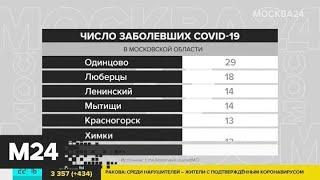 В Подмосковье от коронавируса вылечились еще 3 человека - Москва 24