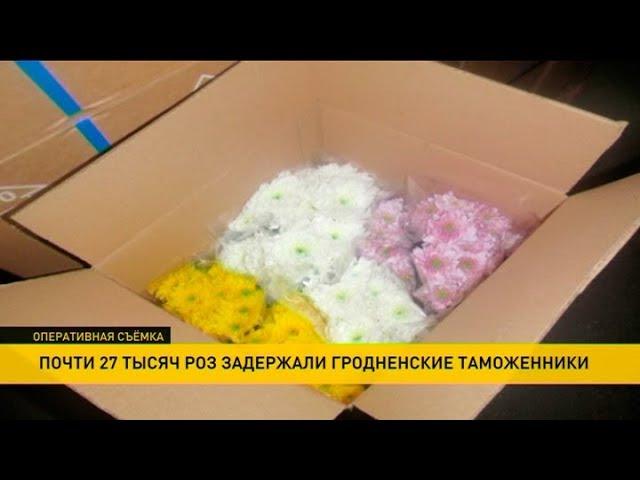 Почти 27 тысяч роз задержали гродненские таможенники