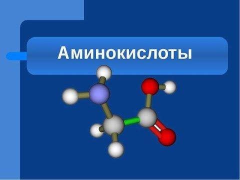 Спортивное питание Sponser официально в России