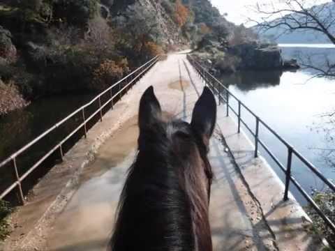 via-verde-del-rio-alberche-rutas-a-caballo-sierra-oeste-de-madrid