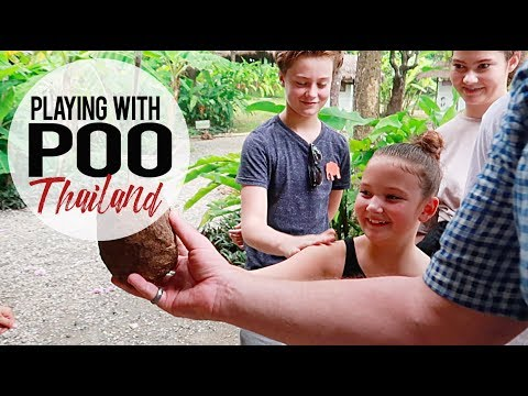 Playing With Poo | Poopoopaper | Chiang Mai, Thailand