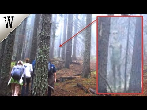 Terrifying IMAGES CAPTURED BY ACCIDENT (UPDATED)