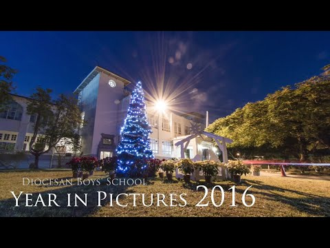 Year in Pictures 2015-2016