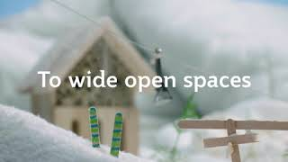 Holiday Homes with Qatar Airways
