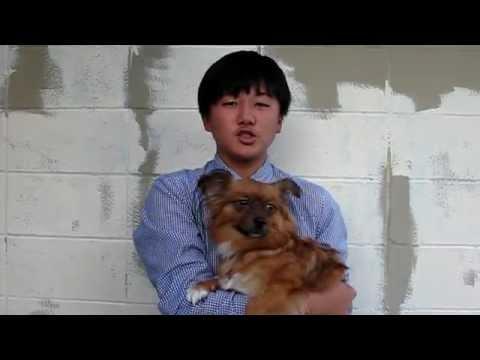 Jun Seo Park For Principal
