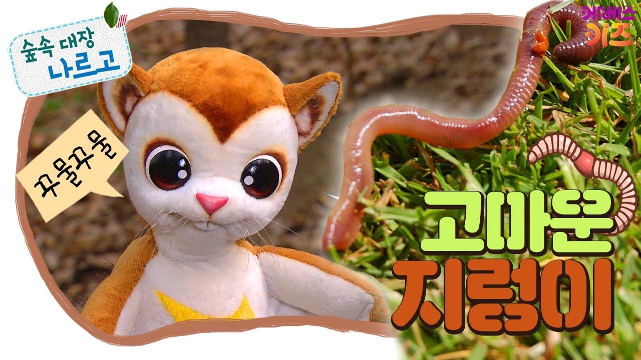 #집에서함께해요ㅣ꾸물꾸물~ 고마운 지렁이!ㅣ숲과 친구되기ㅣ숲속 대장 나르고ㅣKBS 방송