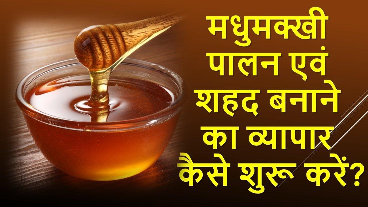 मधुमक्खी पालन एवं शहद बनाने का व्यापार कैसे शुरू करें   Bee keeping and  Honey Processing Business