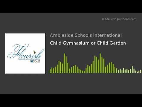 Child Gymnasium or Child Garden