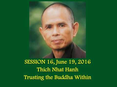 #16 Thich Nhat Hanh - Trusting The Buddha Within