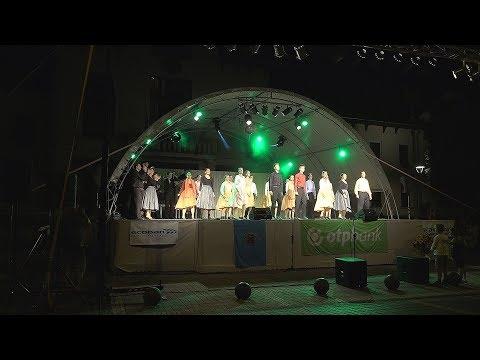 Csongrád TV - Csongrádi Napok megnyitó - 2017.08.01.