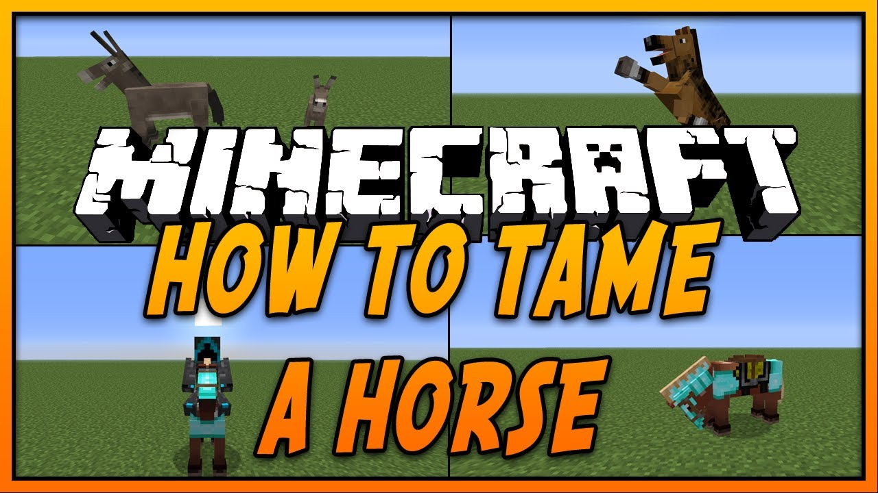 How to tame a horse 6