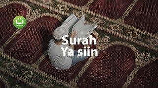 surah-yasin-paling-merdu-full-ayat-dan-terjemah
