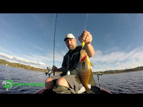 Crappie Fishing Silver Lake - Fall - Crank Baits - Washington