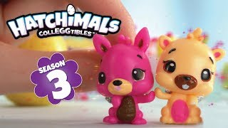 Hatchimals Colleggtibles | New Season 3 | :15 Best Friends Commercial