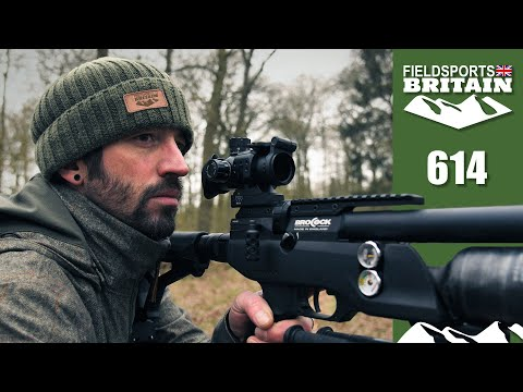 Fieldsports Britain – airgun rabbit hunt and cook