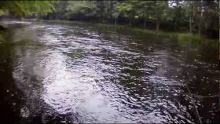 Fly fishing for big salmon - moments from the Mörrum River 2011. Catch and release by John