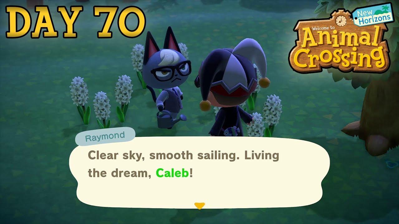 Raymond The Cat Animal Crossing New Horizons Day 70 Youtube