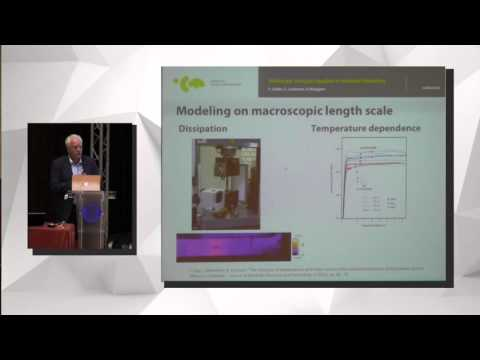 """Peter Wriggers, """"Multiscale Analysis Applied to Material Modeling"""""""