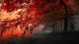 Fired Earth Music - Aphelion (Jesper Kyd - Epic Beautiful Dramatic)