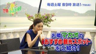 土曜よる9時『世界ふしぎ発見!』8月11日放送ミステリーハンター・坂本三...